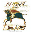 bayeux broderie kit à broder le cavalier avant Hastings